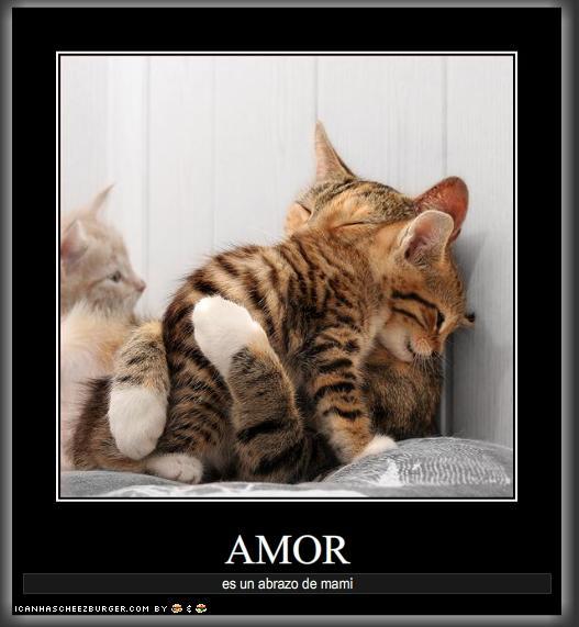 amor-abrazo-de-mami