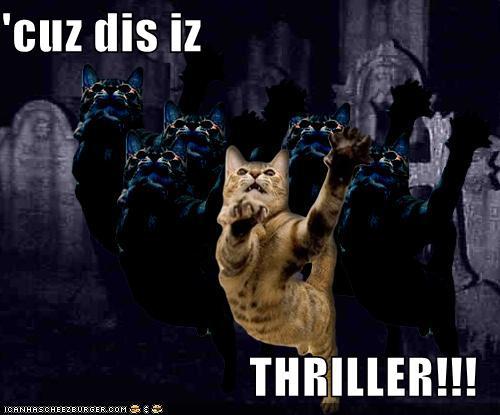 Michael Jackson Thriller Cat