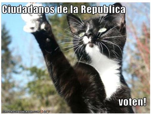 voten ciudadanos