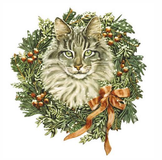 Gato con corona de navidad de jan benz